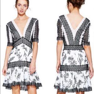 Tadashi Shoji Black White Lace Dress